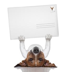 Kuvertieren von Direct-Mailings und Porto sparen